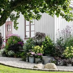 Outdoor Garden Design Hemma hos Karolina Brising och Anders Hrnell i Dalby Garden Landscape Design, Garden Landscaping, Big Leaf Plants, The Secret Garden, Balcony Plants, Garden Cottage, Garden Stones, Dream Garden, Garden Planning