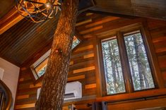 Meadowlark Treehouse at Montana Treehouse Retreat - Treehouses for Rent in Columbia Falls, Montana, United States Vacation Places In Usa, Whitefish Mountain, Columbia Falls, Tree House Plans, Flathead Lake, Impressive Image, Cozy Nook, Diy Network, Through The Window