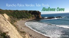 There are tide pools. And then there are tide pools. Find out what puts the Rancho Palos Verdes tide pools at Abalone Cove in a league of their own.