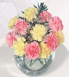 pink and yellow carnations Yellow Carnations, Candy Floss, Cheer Me Up, Daffodils, Pretty Flowers, Birthday Party Themes, Cotton Candy, All The Colors, Wedding Inspiration