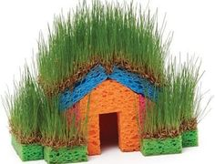 Grass Sponge House   The WHOot