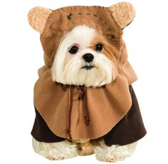 Ewok Dog Costume - Medium | EntirelyPets