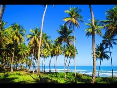 Excellent beachfront lot in unspoilt location   http://www.dr-luxuryrealestate.com/listing-b-051-excellent-beachfront-lot-in-unspoilt-location--76.html