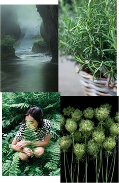 un due tre ilaria  MOOD BOARD ⎬SOOTHING GREEN