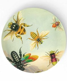 Bees - Antique artwork of insects II - 10 inch Melamine Plate