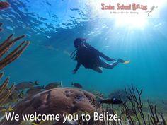 Come and enjoy the Belize barrier reef. #padi #belize #travel #scubaschoolbelize #scubadiving #underwater #sanpedro #scubadivelessons