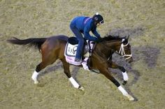 Rachel's Valentina gets chance to shine in wide-open Kentucky Oaks | Daily Racing Form
