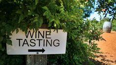 The Unspoken Rules of Napa Valley Wine Tasting | Bon Appetit
