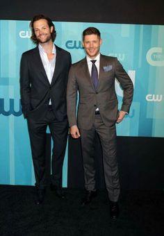 Jared makes Jensen look so tiny :)