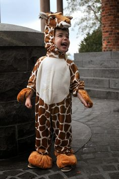 A CUP OF JO: Toby the giraffe