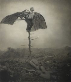 Robert and Shana ParkeHarrison : Architect's Brother : Promisedland - da Vinci's Wings