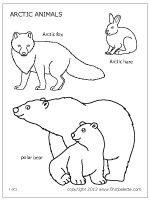 Polar animals coloring page and printables for standing