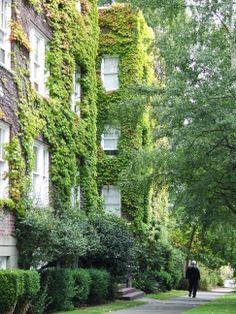 Green+Building   Green building