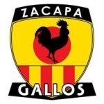 1951, Deportivo Zacapa (Zacapa, Guatemala) #DeportivoZacapa #Zacapa #Guatemala (L13581) Football Team Logos, Football Soccer, Soccer World, Sports Clubs, Ferrari Logo, Crests, Badge, Football Drawings, Football Equipment