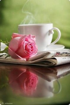 Color splash colour splash colorsplash coloursplash pink blush rose roses flower coffee tea cup cute black and white photography I Love Coffee, Coffee Break, My Coffee, Morning Coffee, Good Morning, Coffee Cups, Tea Cups, Morning Rose, Beautiful Morning