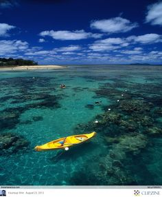 GREAT BARRIER REEF : Dream Of Paradise Would so like to go there but there alot of sharks!!