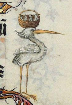 stork carrying its babies, ms. Art And Illustration, Illustrations, Medieval World, Medieval Art, Medieval Manuscript, Illuminated Manuscript, Monster Hunter, Renaissance Artworks, Medieval Paintings
