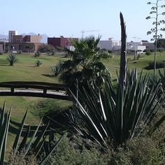 Alboran golf course El Toyo Almeria Spain