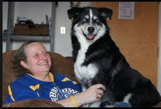 Molly , No Longer A Chain Dog!! | the animal rescue site | Read heartfelt stories of rescue, and share your rescued animal stories with others. Click to read one of the best rescue stories ever!