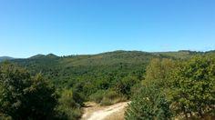 Paisaje ruta de los molinos de San Miguel Country Roads, Mountains, Nature, Travel, San Miguel, Paths, Scenery, Fotografia, Naturaleza