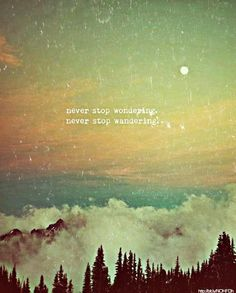 never stop wondering. never stop wandering. - Seelen // the host via http://weheartit.com/entry/37045541