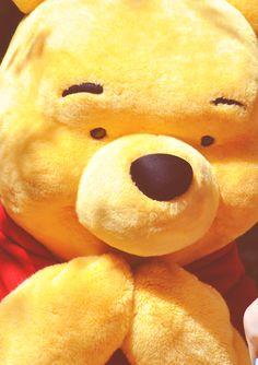 Winnie the pooh u were my childhood and always will be Winnie The Pooh Friends, Disney Winnie The Pooh, Disney Cast, Disney Magic, Eeyore, Tigger, Pooh Bear, Disney Toys, Cute Bears