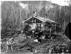 "markwilliamwales: "" Cabin on the Yukon Flats, 1901 """