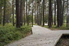 Substance, Ansis Starks · Dzintari Forest Park