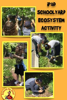 Take the iPads outside to learn about the schoolyard ecosystem including the abiotic and biotic components. Use this engaging scavenger hunt to reinforce your concepts in environmental science. Science Resources, Science Lessons, Science Projects, Teacher Resources, Science Ideas, Teaching Ideas, Middle School Science, Elementary Science, Upper Elementary
