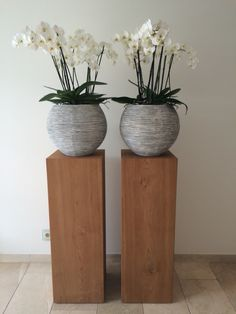 # säulen # orchidee - Ideas for the House - Interior Design Living Room, Interior Decorating, Orchid Arrangements, Flower Pots, Flowers, Massage Room, Deco Floral, Indoor Plants, Office Decor