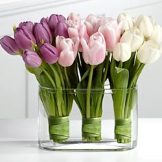 Tulips! for a spring wedding with violet blush and neutral theme. awesome :)