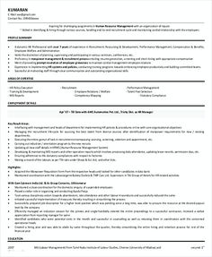 Business Project Manager Resume Template  Professional Manager