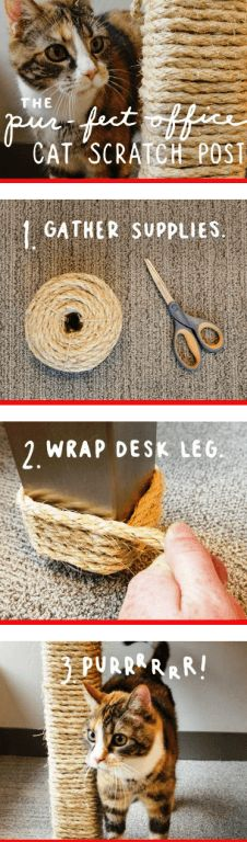 Homemade Cat Scratching Post   25 Adorable DIY Projects You and Your Pet Will Be Fascinated About