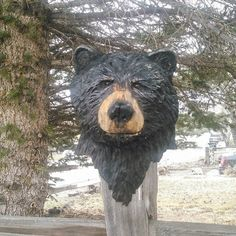 Custom bear bust, we can carve just about any bear design you can imagine.