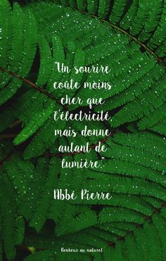 Wallpaper // Citaat Abbot Stone - Apocalypse Now And Then Inspirational School Quotes, Work Quotes, Positiv Quotes, Best Quotes, Funny Quotes, Image Citation, Positive Inspiration, French Quotes, Quotes Indonesia