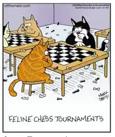 Mystery Fanfare: Cartoon of the Day: Cat Chess Tournaments