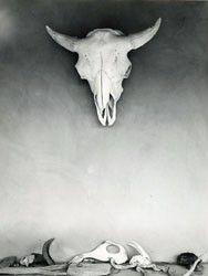 View Cow skull and bones on portal of Georgia OKeeffes ghost ranch house, New Mexico by Todd Webb on artnet. Browse upcoming and past auction lots by Todd Webb. Georgia Okeefe Skull, Georgia O'keeffe, O Keeffe, Skull Painting, Cow Skull, New York Art, Ansel Adams, Animal Skulls, Skull And Bones