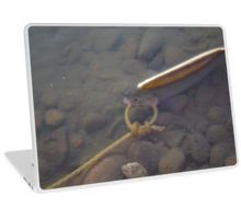 'Goldeye' Laptop Skin by MsSexyBetsy Macbook Air 13, Laptop Skin, Artsy Fartsy, Promotion, Jackson, Jackson Family
