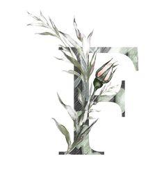 H927 (50) Monogram Wallpaper, Alphabet Wallpaper, Abstract Iphone Wallpaper, Stencil Font, Black Background Wallpaper, Alphabet Images, Watercolor Lettering, Flower Letters, Flower Backgrounds
