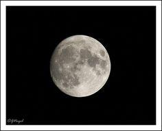 Best Settings for Moon Shots: Nikon DX SLR (D40-D90, D3000-D7200) Talk Forum: Digital Photography Review
