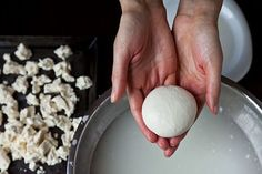 How to make mozzarella (step by step with beautiful photos!)