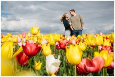 Engagement photos at the Tulip Festival in the spring in the Willamette Valley by Katy Weaver Photography