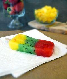 Homemade Fruit Pops-  Yum!