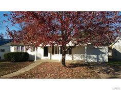 This 3 bedroom, 1 & 3/4 bath Ranch home is ready to move in and clean as can be. Spacious bedrooms, large eat-in kitchen, huge living room with lots of wall space, extra-large laundry room with new cabinets and sink (could be an office or extra bedroom). Some recent upgrades include: Natural gas hot water heater, heat pump A/C and natural gas furnace, seamless gutters with covers, roof (architectural), vinyl windows that are double hung tilt to clean, new paint throughout in Salem MO