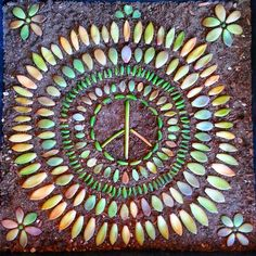 Learn how to create succulent propagation mandalas with this step-by-step guide by from Leaf & Clay. Jen Tao walks us through the process of creating her famous propagation mandalas.