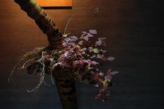 ギャラリー | 花匠 佐々木直喜 Ikebana, Art Floral, Floral Design, Daniel Ost, Diy Flowers, Design Projects, Gallery, Creative, Nature