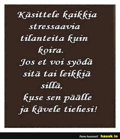 Käsittele kaikkia stressaavia ... - HAUSK.in Life Words, Family Humor, Motto, Funny Texts, Cool Pictures, Funny Quotes, Inspirational Quotes, Positivity, Lol
