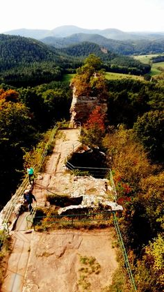 Burg Drachenfels14