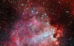 Omega Nebula or Swan Nebula