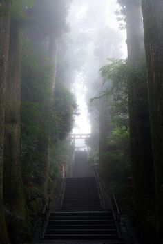 Hakone shrine, Japan. (rp: I don't know why, but Shinto shrines are almost always at the top of thousands of stairs.)